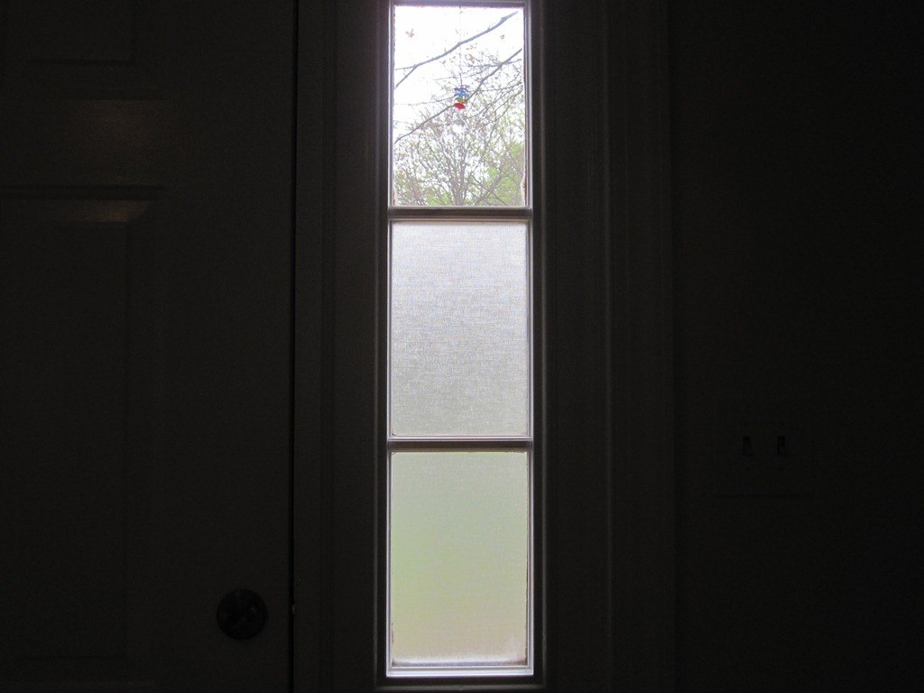 for shades door your we front windows privacy treatments need window sidelight little informative side a can ideas light